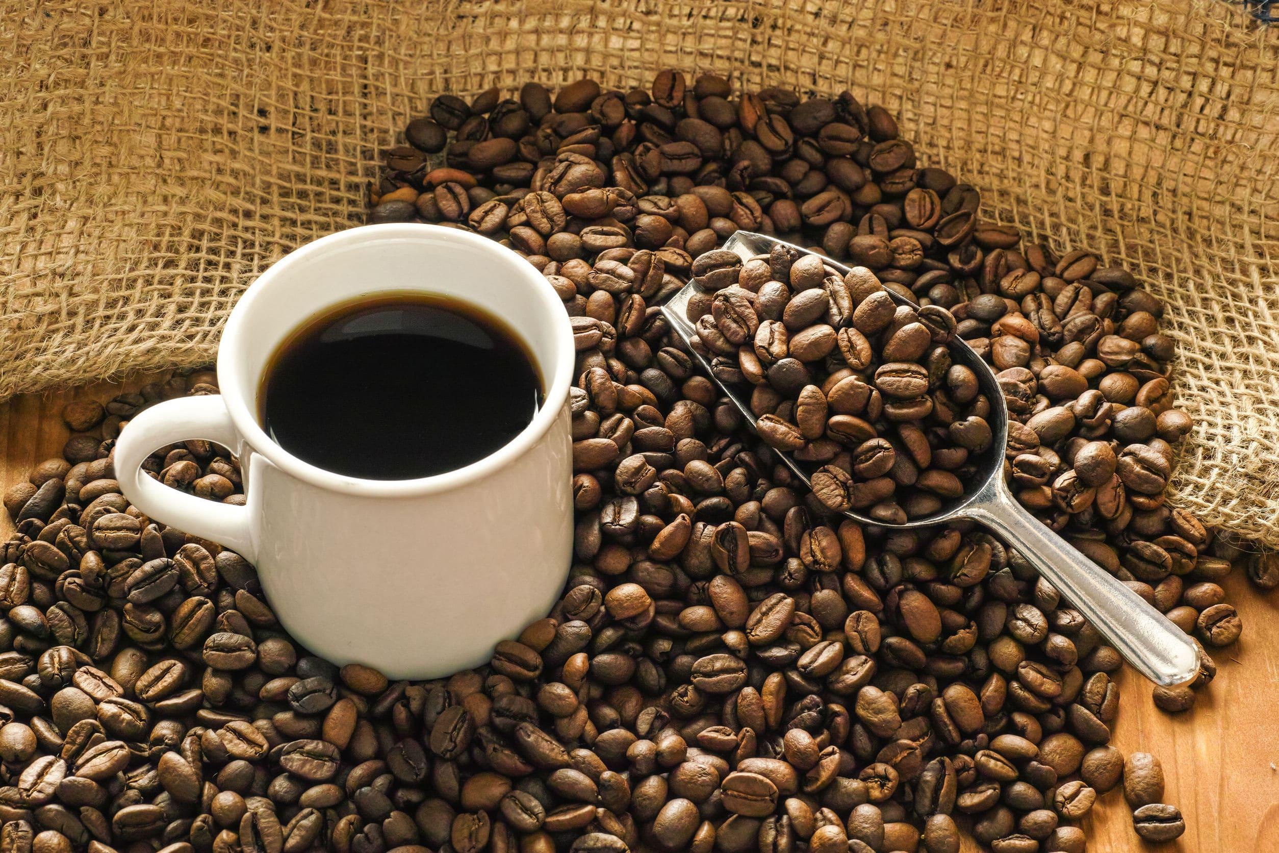コーヒーダイエット理由