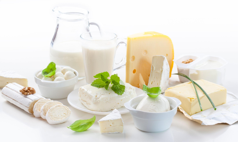 低カロリー高タンパク質乳製品