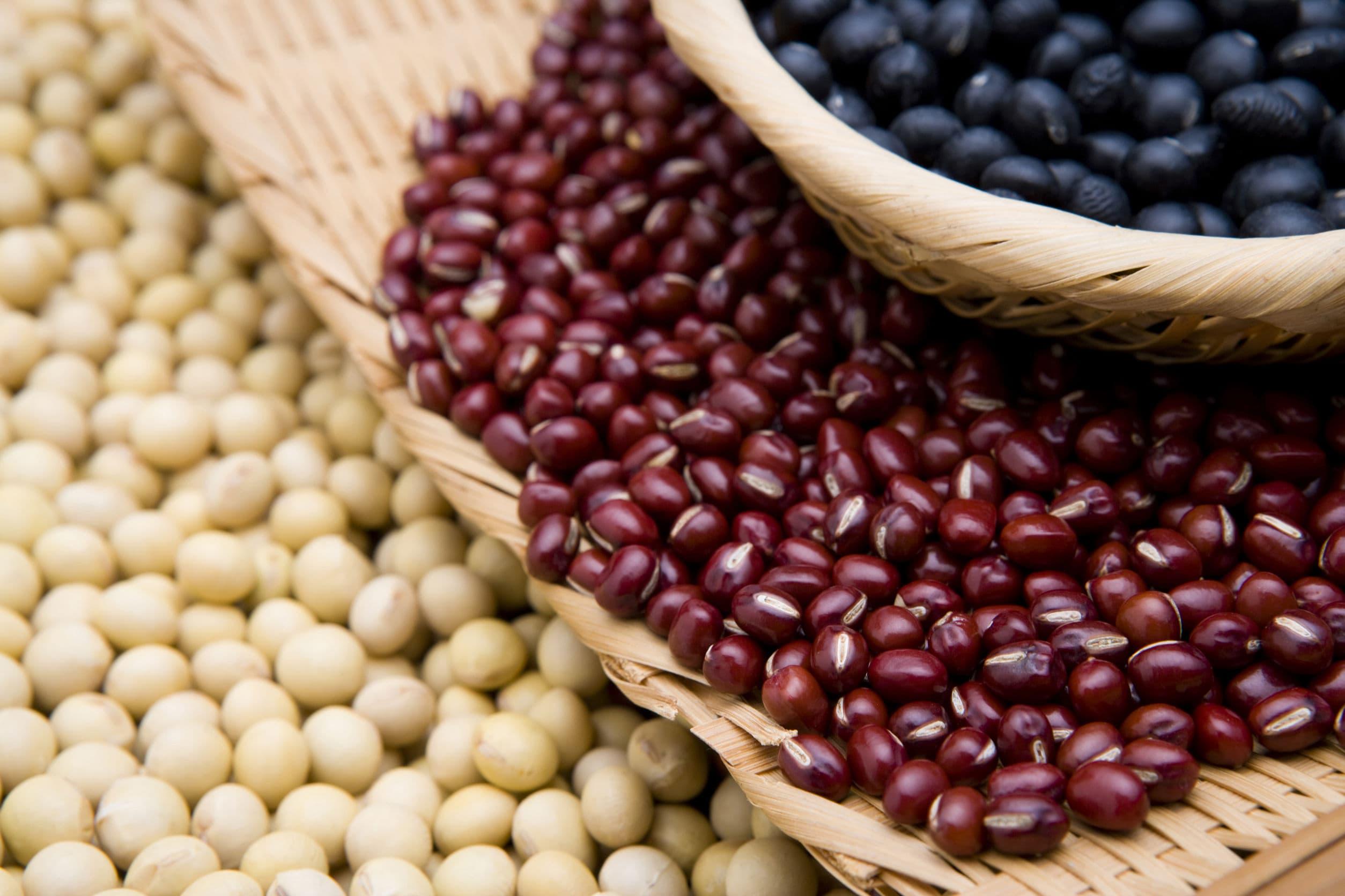 低カロリー高たんぱく豆類
