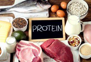 低カロリー高タンパク質食品