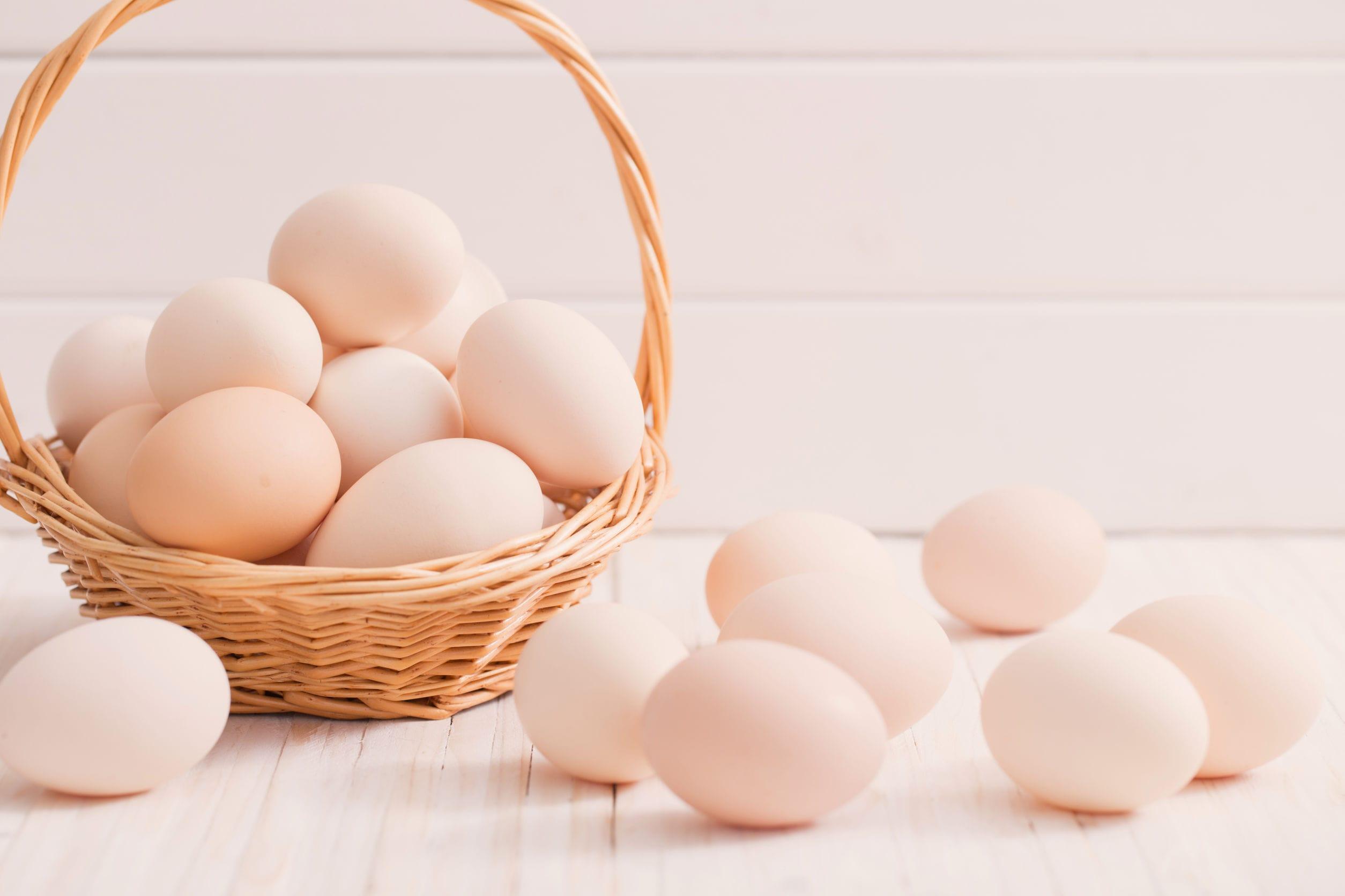 卵栄養成分