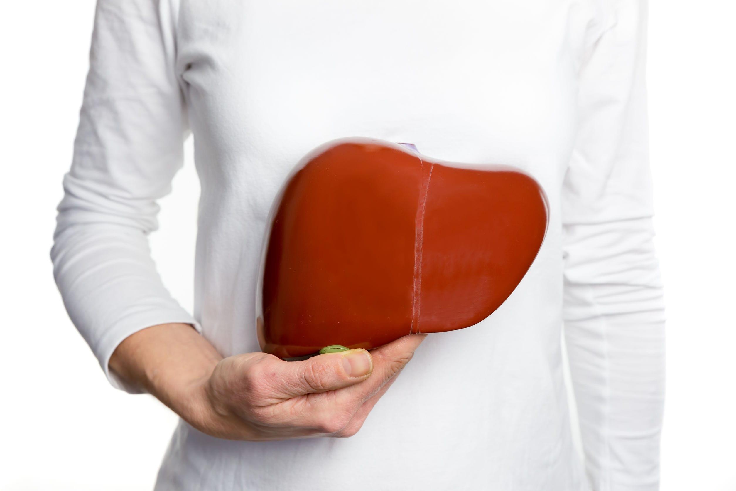 ダイエット肝臓
